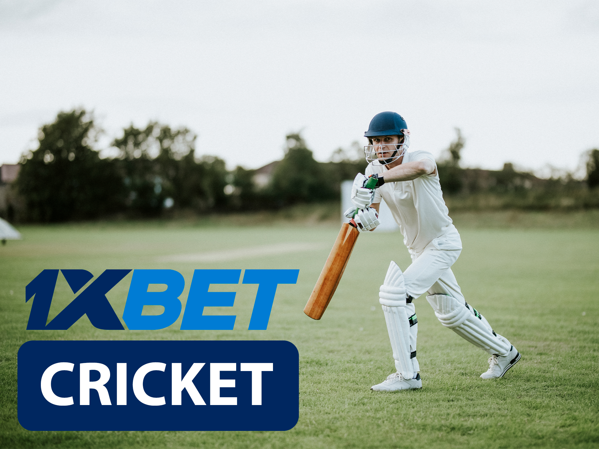 Start betting on cricket with 1xBet